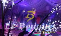 Pista-de-Baile-con_Luz-LED.jpg
